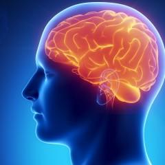 Лечение опухолей головного мозга в Израиле