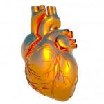 голограмма сердца.