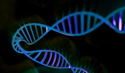 Генетический тест FoundationOne