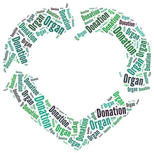 Канадские врачи - доноры органов