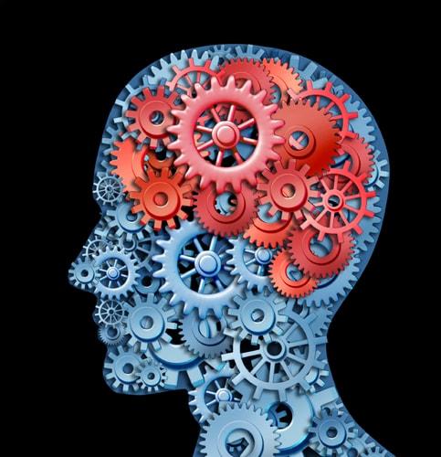 3D-карта мозга