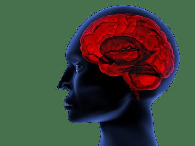 Лечение аневризмы головного мозга в Израиле