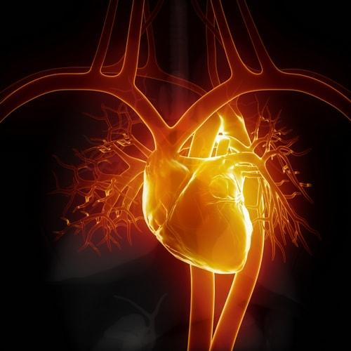 Лечение гипертензии, сердце