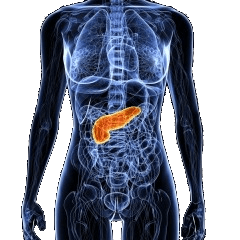 Pancreatic Cancer Treatment in Israel | Manor Medical Center