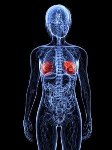 Мутации генов BRCA-1 и BRCA-2