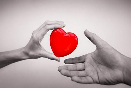 новые иммунные клетки, защищающие сердце