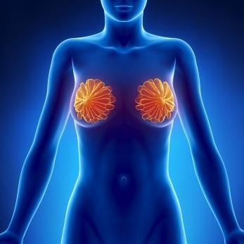 тройной негативный рак молочных желез