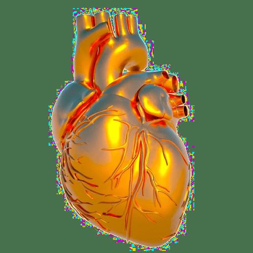 аневризма аорты - самое опасное заболевание сердечнососудистой системы